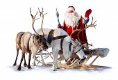pic of harness  - Santa Claus are near his reindeers in harness on the white background - JPG