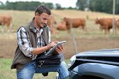 stock photo of cattle breeding  - Breeder in farm using digital tablet - JPG
