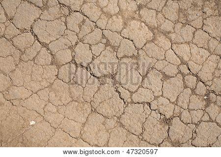 Trockenes Land