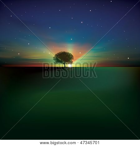 Abstract Background With Clouds Tree And Sunrise