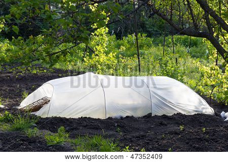 A homemade greenhouse.