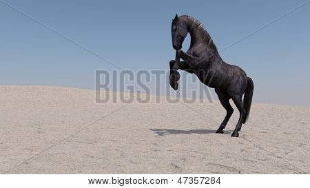 black alluring on Desert Sand Dune Mountain Landscape
