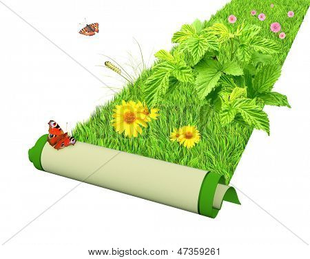 Carpet with bright green grass and flowers. Isolated over white