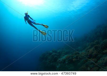 Mujer joven apnea en un mar sobre arrecifes de coral