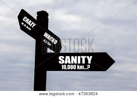 Sanity Or Crazy? For Business, Life & Politics!