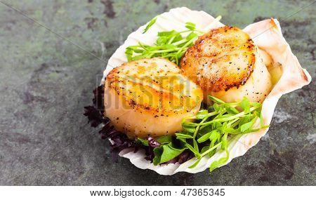 Pan Seared Scallops On A Half Shell