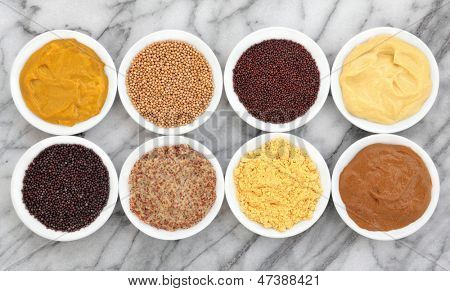Mustard selection of powder, seed, french, dijon, english and wholegrain in white porcelain bowls over marble background.