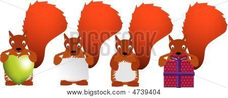 Red Squirrel Set