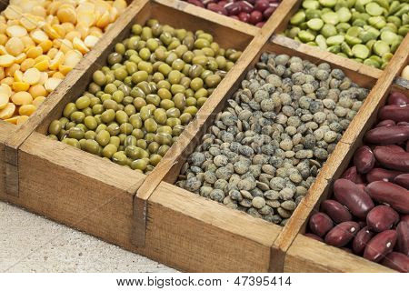 legumes in box abstract with a selective focus on French green lentil