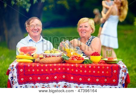 Happy Mature Couple Having Picnic Outdoors