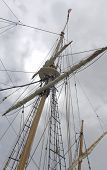 Sailing Ship 9tall ship)