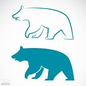 picture of grizzly bears  - Vector image of an bear on white background - JPG