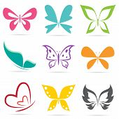 stock photo of summer insects  - Vector group of butterflies on white background - JPG