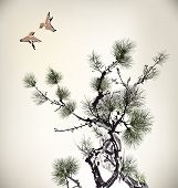 stock photo of pine-needle  - Ink style Pine Tree and birds nature - JPG