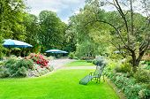 pic of canopy  - beautiful summer park with green lawns and flower beds - JPG