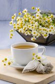 stock photo of naturopathy  - Chamomile Herbal Tea in a white cup - JPG