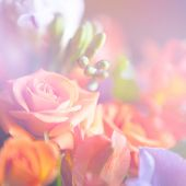 beautiful flowers made with color filters, floral background