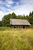 pic of hollow log  - the thrown old wooden house located in rural areas - JPG