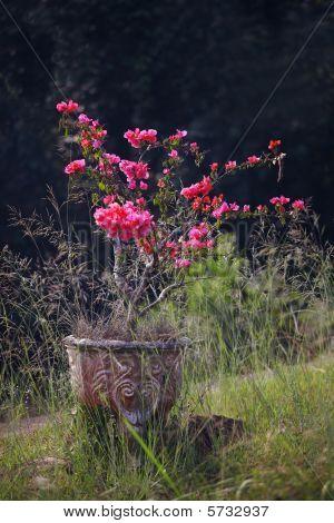 Flowers In old Vase