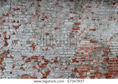 the plastered wall