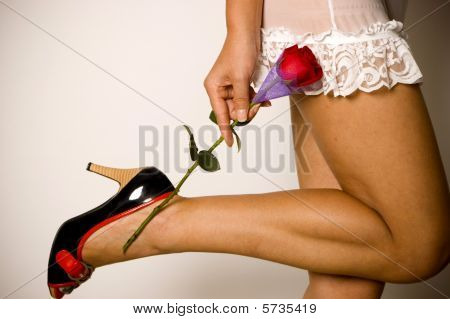 Girl In Sexy Lingerie Holding Rose