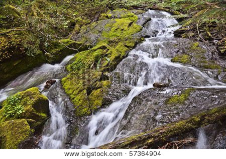 Water cascading over mossy rocks