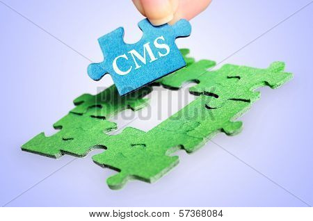 Cms Word