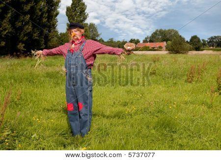 Scarecrow With Bird's Nest