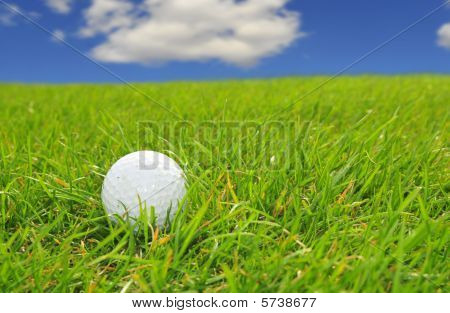 Golf On A Good Day