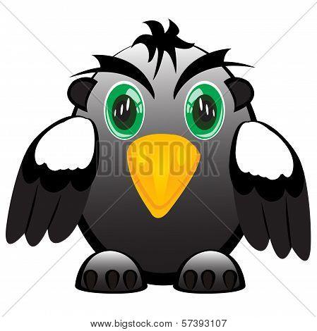 Bird smaile