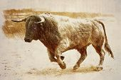 stock photo of bullfighting  - Pencil drawing on a linen of a brave bull to the gallop in a bullfight - JPG
