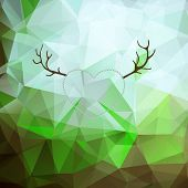 foto of deer horn  - Background with nature - JPG