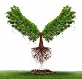 stock photo of evolve  - Freedom potential and the power of determination as a business and life concept with a green tree growing open wings and flying off to success as a metaphor for evolving to find opportunity - JPG