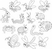 stock photo of gnats  - Collections of cartoony insects - JPG