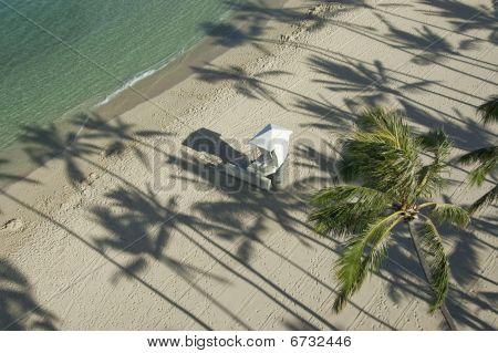 Palm Tree Shadows And Lifeguard Hut.