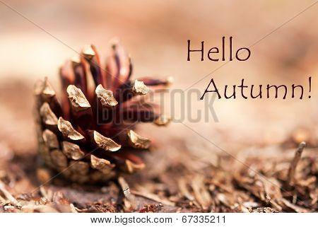 Autumn Background With Hello Autumn