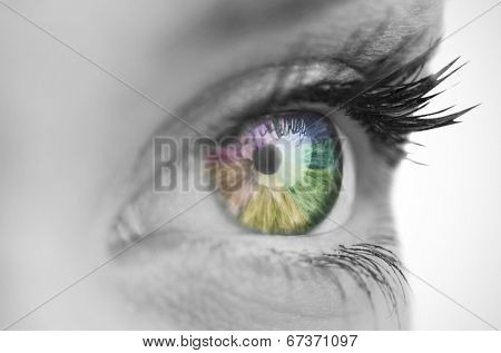 Multi colored eye on grey face on white background