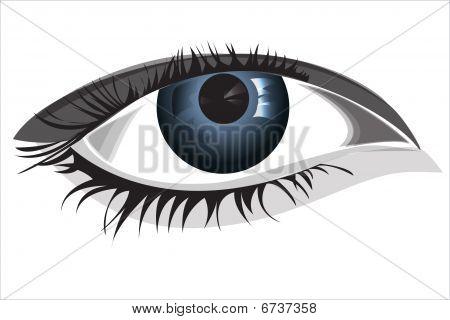 Ojo de la mujer, ilustración vectorial, archivo EPS incluido