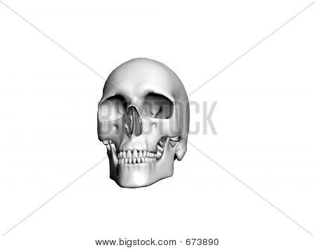 Skull1 Clip