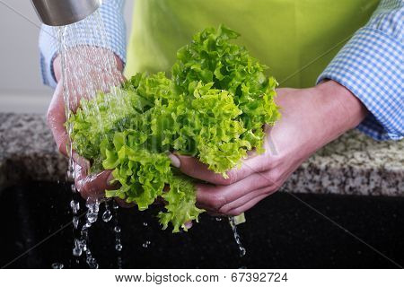 Housewife Cleans A Green Salad