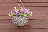 image of planters  - wicker pot with red flowers on a wooden wall - JPG