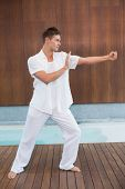 image of tai-chi  - Handsome man in white doing tai chi in health spa - JPG