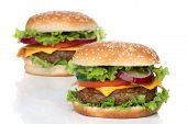 image of hamburger  - Two delicious hamburgers isolated on white background  - JPG