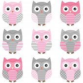 stock photo of owl eyes  - Cute Owl vector set  - JPG