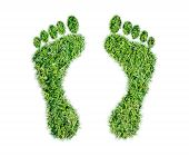 stock photo of carbon-footprint  - Green grass ecological footprint concept on over white background - JPG