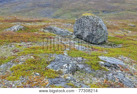 Rock on the moorland, lowland.
