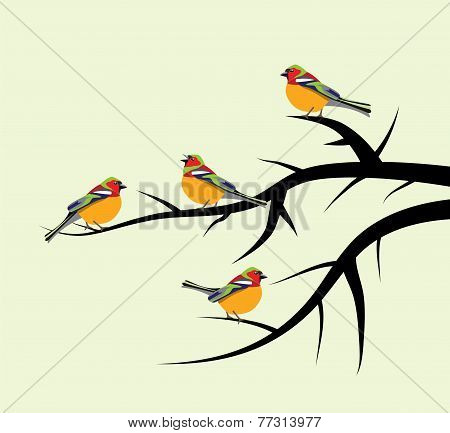 Vector Birds On Tree Branches
