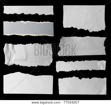 Eight pieces of torn paper on black. Copy space