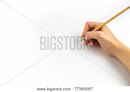Hand Holding Wooden Pencil Isolated On White Background