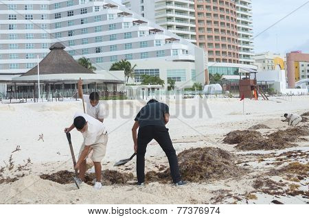 Cancun Beach Cleaning